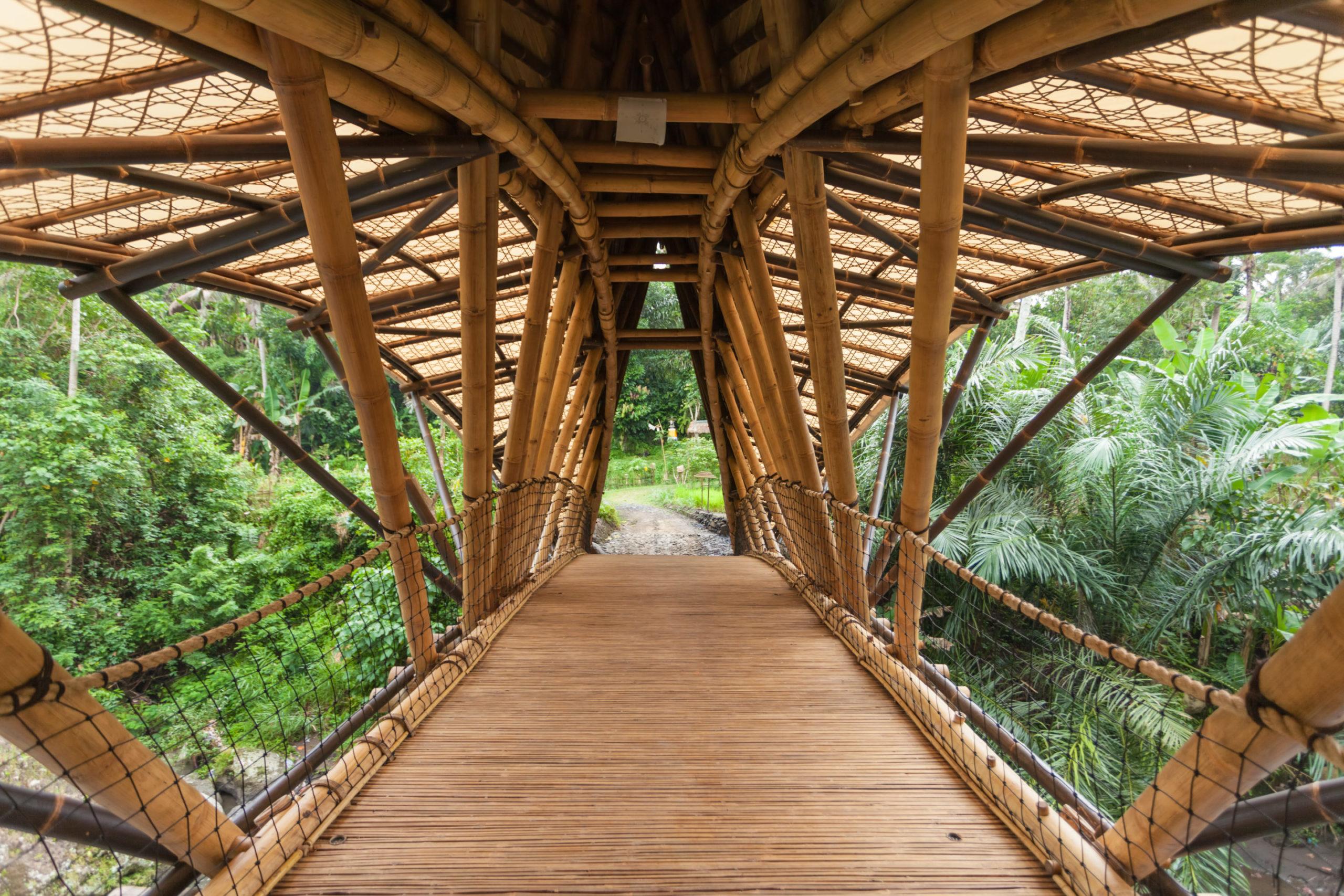 pont-bambou