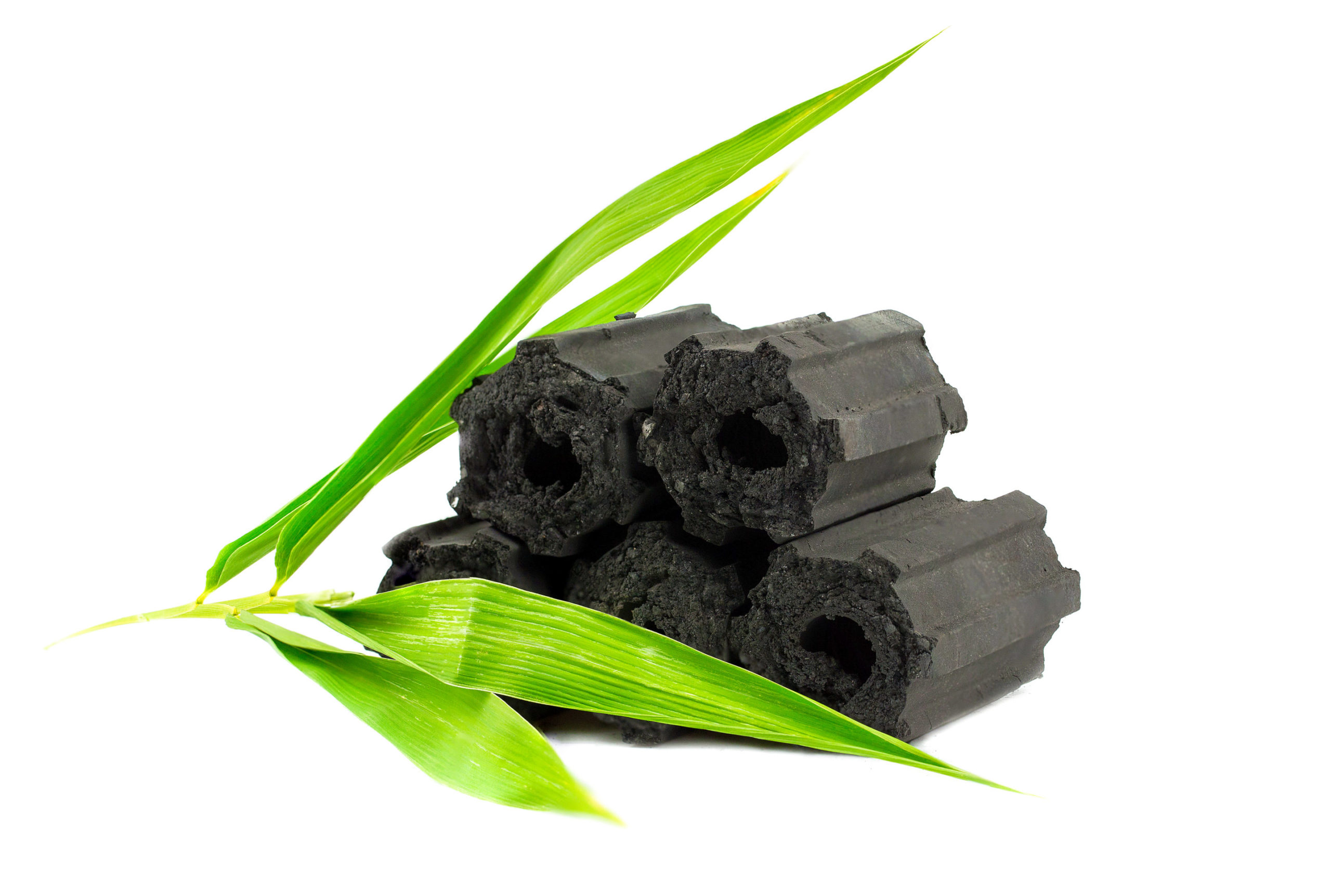 buches-carbon