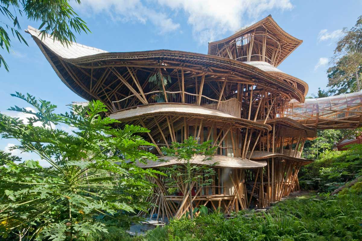 maison-bambou