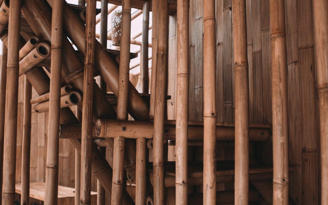 utilisation-du-bambou
